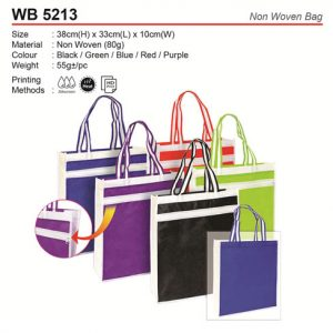 Non Woven Bag with Zip (WB5213)
