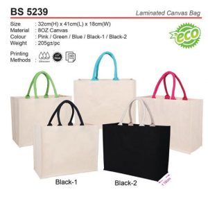 Laminated Canvas Bag (BS5239)